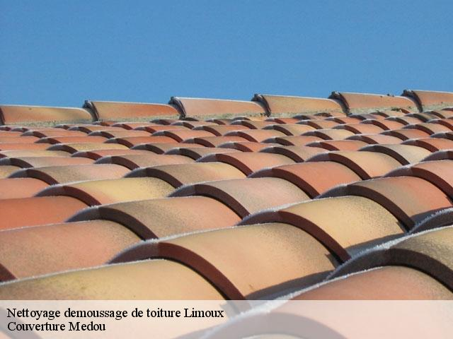 Nettoyage demoussage de toiture Limoux tél: 04.82.29.41.82
